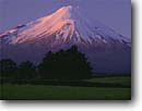 Stock photo. Caption: Mount Taranaki North Island, New Zealand -- mountains tree trees snow peak peaks alpine south pacific islands volcano volcanos volcanoes dramatic high southern hemisphere cone shape shaped awesome mountain parks dramatic volcanic volcanoe sunny spring clear blue skies landscape landscapes scenics
