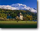 Stock photo. Caption: Castle at Surlej Silvaplana Lake and Fuorda Surlej The Alps, Upper Engadin Graubunden Canton, Switzerland -- cows livestock farm farms pastoral grazing castles lakes snow capped peak peaks mountain mountains fall autumn color glaciers travel tourist destination destinations europe european balance tranquil tranquility landscape landscapes builldings sunny clear