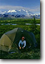 Stock photo. Caption: Backpacker and tundra pond  and Mt. McKinley Denali National Park Alaska --   camp tent america tallest mount peak peaks parks mountains snow tundra summer pond arctic taiga tourist destination destinations subalpine dramatic majestic calm placid camping camper campers wilderness backcountry wild wildernesses people