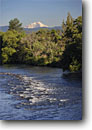 Stock photo. Caption: Pit River and Mount Shasta   from Highway 299 Bridge Cascade Range Shasta County,  California -- rivers mountains volcano volcanoes riparian summer peak peaks