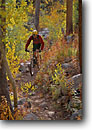 Stock photo. Caption: Mountain biking Rock Creek Inyo National Forest Sierra Nevada,  California -- Keywords: united states america high mountain high country sierras people outdoor recreation biker bicycle bicycles trail trails bike transportation cross country crosscountry fall autumn foliage freedom solitude excitement exercise