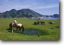 Stock photo. Caption: Cowboys watering horses after a roundup Twitchell Reservoir   near Santa Maria San Luis Obispo County, California -- united states america person people cowboy ranching ranch lifestyle range western heritage wrangler wrangling cowpoke  roots land independant determined proud work ethic horses horse working hand hands horseback