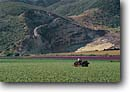 Stock photo. Caption: Santa Ynez River Valley   near Lompoc Santa Barbara County California -- united states america people tractor tractors plowing plow agriculture farming farm rural pastoral spring crop crops rows flower flowers people