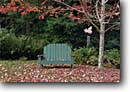Stock photo. Caption: Adirondack chair   and red maple Private Garden Humboldt County, California -- gardens gardening landscaping temperate climate backyard backyards landscape landscaped chairs maples autumn fall foliage leaves windchime windchimes pigs flying lawn tree trees west coast inviting leisure quiet relax relaxing home homes yards yard