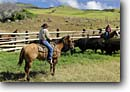 Stock photo. Caption: Legendary Big Island Cowboy (Paniolo) Freddy Rice and his daughter Lilah on their ranch, Kohala Mountains North Kohala, Island of Hawaii, Hawaii -- horse horses ranches paniolos cowboys livestock hawaiian tropical cattle