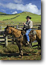 Stock photo. Caption: Legendary Big Island Cowboy (Paniolo)   Freddy Rice on his ranch Kohala Mountains, North Kohala Island of Hawaii, Hawaii -- horse horses ranches paniolos cowboys livestock hawaiian tropical cattle