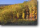 Stock photo. Caption: Northern hardwood forest   from Hesitation Point Brown County State Park Brown County, Indiana -- forests northern tree trees upper midwest united states america forests forest forests mixed hardwood foliage autumn fall color colors colour colours landscape landscapes sunny parks midwestern