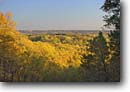 Stock photo. Caption: Northern hardwood forest   from vista point Brown County State Park Brown County, Indiana -- forests northern tree trees upper midwest united states america forests forest forests mixed hardwood foliage autumn fall color colors colour colours landscape landscapes sunny parks midwestern