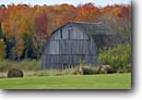 Stock photo. Caption: Rolled hay and old barn Highway 64 Taylor County Wisconsin -- autumn fall midwest upper midwestern landscape landscapes scenic scenics destination tourist travel foliage forests united states barns straw harvested americana nostalgia wooden farm farms farming ranch ranchland farmland