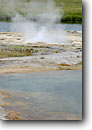 Stock photo. Caption: Geyser next to the Firehole River Midway Geyser Basin Yellowstone National Park Rocky Mountains, Wyoming -- hot spring springs pools basins parks mountains geysers thermal area areas geothermal geothermals summer world heritage site sites colorful tourist travel destination destinations attractions attraction hotsprings rockies landmark landscapes rivers
