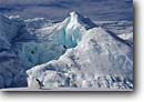 Stock photo. Caption: Adelie penguin and iceberg Franklin Island Ross Sea Southern Ocean, Antarctica -- Keywords: iceberg icebergs severe extreme weather climate global warming international research south pole continent southern coastal penguins habitat glacier glacial glaciers bird birds snow solitary alone single vast antarctic aquatic flightless seabird seabirds