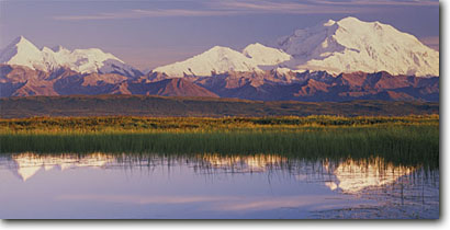 Stock photo. Caption: Mt. McKinley and Mt. Brooks   from tundra pond Denali National Park Alaska -- united states mountains ponds mountain alaskan range summer evening light mount parks tundra arctic landscape landscapes reflection reflections majestic tourist destination destinations breathtaking snow capped panoramic panoramics panoramas clear