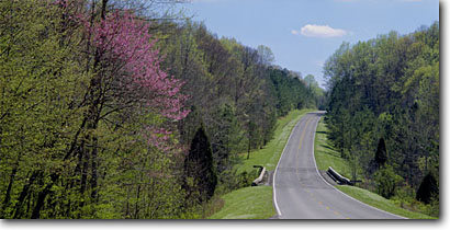 Stock photo. Caption: Eastern redbud near Rock Spring Natchez Trace Parkway Lauderdale County Alabama -- spring countryside united states america rural landscape landscapes south southern deep redbuds parkways road roads roadways sunny clear winding highway highways transportation paved scenic scenics blooming panorama panoramas panoramic panoramics