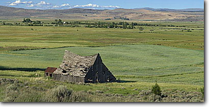 Stock photo. Caption: Deteriorating barn Suprise Valley Modoc County California -- panoramic panoramics united states america old barns ranch house landscape landscapes building buildings ranching pastoral rustic ranches farms farming dispair sunny clear dilapidated falling down abandoned homestead homesteads ranchland northern