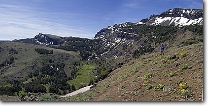 Stock photo. Caption: Summit trail below Warner Peak South Warner Wilderness Warner Mountains, Modoc National Forest Modoc County, California -- panoramic panoramics united states timberline flower flowers trails peaks wildernesses backcountry backpacking hiking summer highcountry summits sunny blue skies clear skies landscape landscapes people person hiker hike woman women backpacker hikers