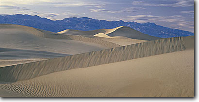 Stock photo. Caption: Mesquite Flat Dunes Death Valley National Park Mojave Desert California -- panoramic panoramics panoramas deserts southwest southwest southwestern arid mohave landscape landscapes scenes views expansive scenic scenics view parks dune sand panorama ranges mountain background ripples soft solitude lonely eternity western west