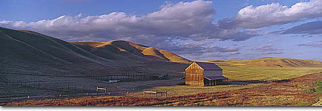 Stock photo. Caption: Barn along Highway 46   near Shandon San Luis Obispo County California -- united states america barns pastoral ranch ranching americana summer panoramic panoramics panoramas