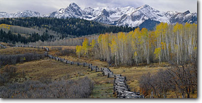 Stock photo. Caption: Aspen rail fence and the Sneffels Range   from Dallas Divide San Juan Mountains Rocky Mountains,  Colorado -- aspens tree trees fall autumn color forests united states rockies peak peaks fourteener fourteeners colours colours fences west western ranges ranching ranch panoramic panoramics panoramas panorama landscape landscapes scenic views scenics snow view