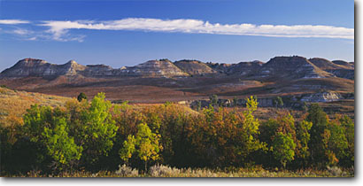 Stock photo. Caption: Rocky Mountain juniper and green ash South Unit Theodore Roosevelt National Park South Dakota -- badland parks great plains northern fall autumn united states eroded erosion weathering weathered landscape landscapes prairies shortgrass original vegetation buffalo habitat trees tree panoramic panoramics panoramas native prairie clear sunny scenic view