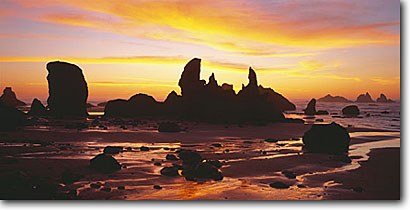Stock photo. Caption: Seastacks   below Grave Point Bandon Beach Bandon,  Oregon -- united states seascapes seascape ocean waves spring coast parks pacific west travel tourist destination destinations beaches shoreline shorelines seastack seastacks coastline panoramic panoramics panoramas sunset sunsets rugged dramatic landscapes scenic