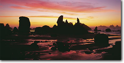 Stock photo. Caption: Seastacks at sunset Bandon Beach Bandon Oregon -- united states seascapes seascape ocean waves spring coast parks pacific west travel tourist destination destinations beaches shoreline shorelines icon seastack seastacks coastline panoramic panoramics panoramas sunset sunsets rugged landmarks landscapes