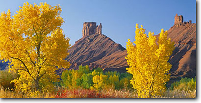 Stock photo. Caption: Fremont cottonwoods frame Priest and Nuns on Castle Rock Colorado Riverway Colorado Plateau, Utah -- rock desert deserts buttes slickrock canyon country plateaus arid erosion weathered weathering landscape landscapes pristine panoramic panoramics panoramas panorama blue skies clear scenics sunny landmarks named formations landmark formation fall autumn