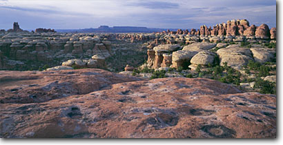 Stock photo. Caption: Elephant Canyon and Junction Butte   from trail to Chesler Park Canyonlands National Park Colorado Plateau,  Utah -- deserts canyon country parks buttes butte southwest spring united states colorful erosion distance weathered weathering landscape landscapes vista vistas overlook overlooks waterpockets slickrock rock hoodoo hoodoos panoramic panoramics panoramas panorama
