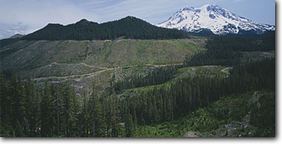 Stock photo. Caption: Clearcuts above Deer Creek   and Mt. Rainier Snoqualmie National Forest Cascade Range,  Washington -- clearcut logging destruction logged over devastation forests ranges pacific northwest northwestern united states america summer stump stumps timber harvest mount roads harvesting industry industrial panoramic panoramics panoramas road damage landscapes