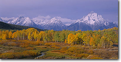 Stock photo. Caption: Mt. Moran from Oxbow Bend Teton Range Grand Teton National Park Rocky Mountains,  Wyoming -- united states america landscape landscapes mountain autumn fall color colour colours colors snow capped peaks tetons rockies mountain parks panoramic panoramics panoramas