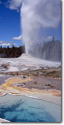 Stock photo. Caption: Lion Geyser and Hot Spring Yellowstone National Park Rocky Mountains Wyoming -- world heritage site sites summer parks panoramic panoramics tourist travel destination panorama panoramas rockies thermal features steam steamy fumerole fumeroles family attraction attractions warm springs basin basins geysers sunny blue skies eruptin
