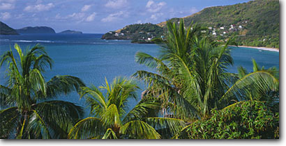Stock photo. Caption: Coconut palms,  Friendship Bay   and Petiti Nevis and Isla a Quatre Bequia,  St. Vincent and The Grenadines Windward Islands,  Lesser Antilles -- seascape seascapes caribbean tropical island bays sunny warm away exotic romantic getaway vacation destination destinations picturesque coastline family palm panoramic panoramics panoramas sunny blue ocean scenics scenic landscapes landscape skies tropics