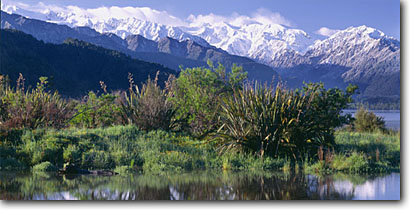 Stock photo. Caption: Mt. Tasman and Mt. Cook   from Lake Mapourika Westland National Park, Southern Alps South Island, New Zealand -- destination destinations vacation vacations tourist travel landscape landscapes international snow capped peaks summer panoramic panoramics panoramas panorama scenic sunny clear skies scenics scenic views vegetation native parks dramatic peak mountains