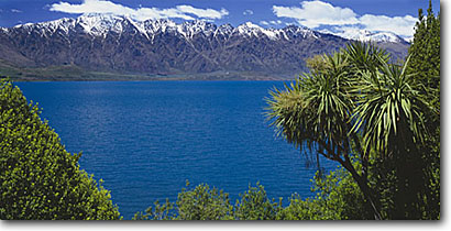 Stock photo. Caption: Cabbage tree, Lake Wakatipu   and The Remarkables Southern Alps South Island, New Zealand -- destination destinations vacation vacations tourist travel landscape landscapes lakes blue deep international snow capped peaks summer panoramic panoramics panoramas panorama scenic sunny clear skies dramatic colour color scencis contrast contrasts views