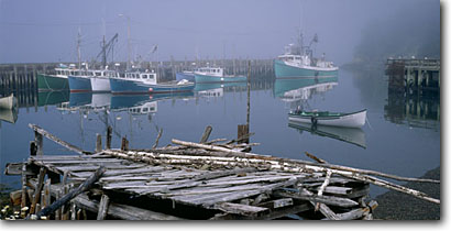 Stock photo. Caption: Campobello Island Charlotte County New Brunswick Maritime Provinces, Canada -- panorama panoramas panoramic panoramics coastal coastline coastlines shores boat fishing fleet  vessels vessel commercial fishermen industry clear sunny south harvesting food scenic scenics destination port ports canadian islands maritimes