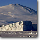 Stock photo. Caption: Mount Melbourne, iceberg   and emperors marching Ross Sea Southern Ocean, Antarctica -- Keywords: