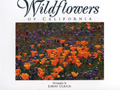 Wildflowers of California Postcard Book