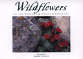 Wildflowers of the Plateau and Canyon Country Postcard Book