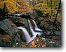 Stock photo. Caption: Trap Falls   and American beech trees Willard Brook State Forest Massachusetts -- waterfall waterfalls creek creeks stream streams parks fall autumn color colors cloudy united states america northeast northeastern parks cascade cascades leaves leaf leafs water flowing foliage scenic scenics park