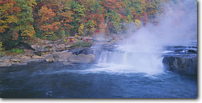 Stock photo. Caption: Ohiopyle Falls and Ferncliff Peninsula Youghiogheny Ohiopyle State Park Fayette County,  Pennsylvania -- waterfall waterfalls rivers parks fall autumn trees color colors united states tree tourist attraction attractions northeast northeastern cold steam flowing fresh clean clear colour colours powerful thundering power panoramic panoramics panoramas foliage